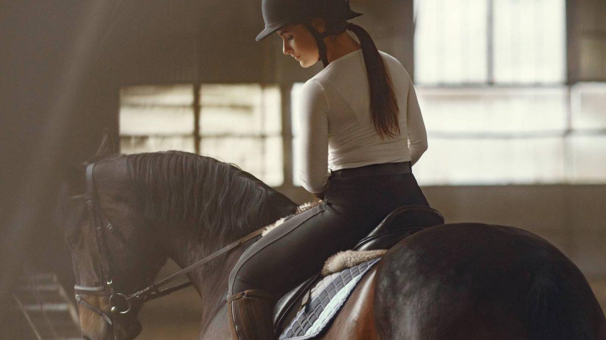 Czaprak dla konia – czym jest i jak wybrać odpowiedni?