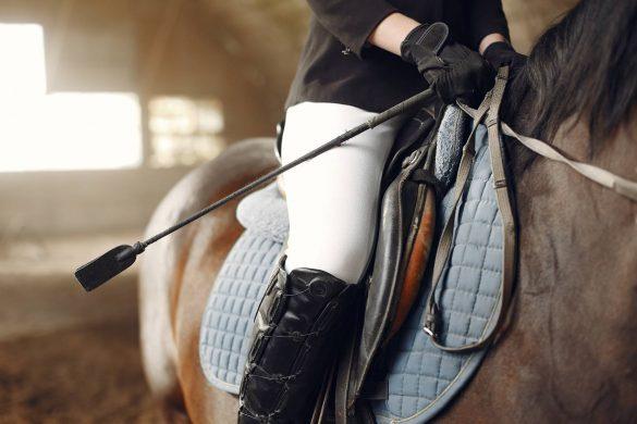 siodło dla konia